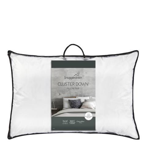 Snuggledown Clusterdown Pair of Pillows