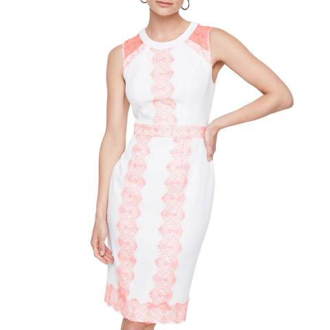 Damsel In A Dress Ivory/Pink Akaria Lace Dress