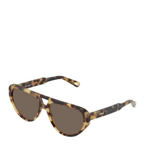 Chloe Women's Havana Chloe Sunglasses 58mm