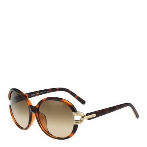 Chloe Women's Tortoiseshell Sunglasses 58mm