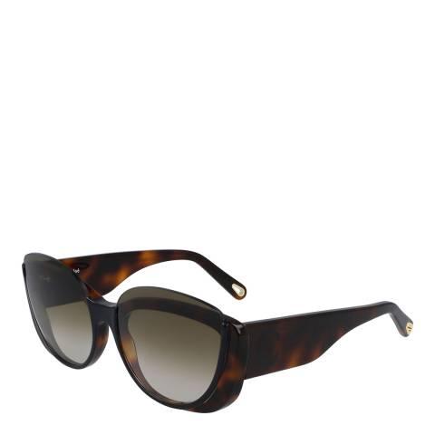 Chloe Women's Chloe Black/Brown Sunglasses 59mm