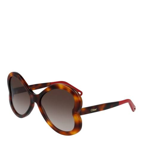 Chloe Women's Chloe Brown Sunglasses 58mm