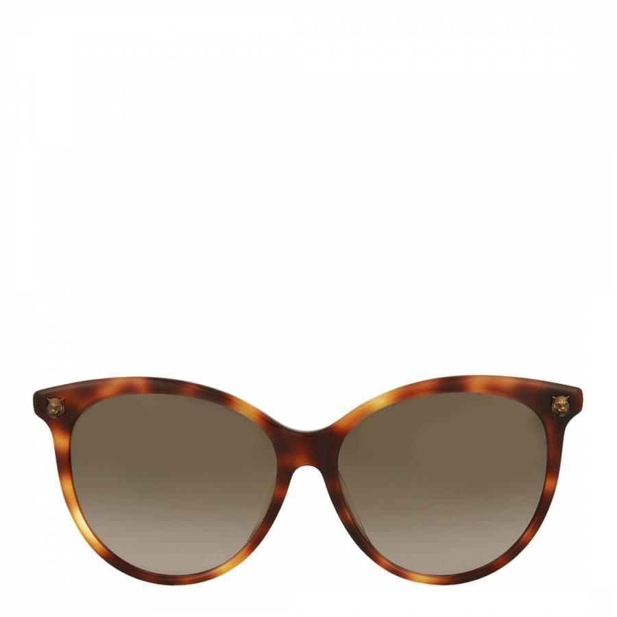 786546657e2 Womens Gucci Brown Sunglasses 50mm - BrandAlley