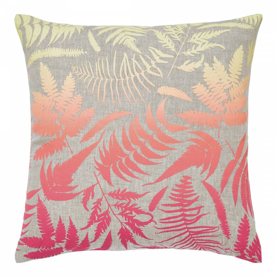 Image of Filix Cushion Coral