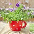 Smart Garden Teacup Heart Planter