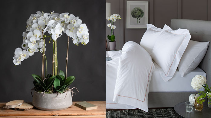 Stay at Home: Home Favourites Add luxe decorative accents into interior to make your home as comfortable as possible. Shop potted plants, cushions and luxury bedding.