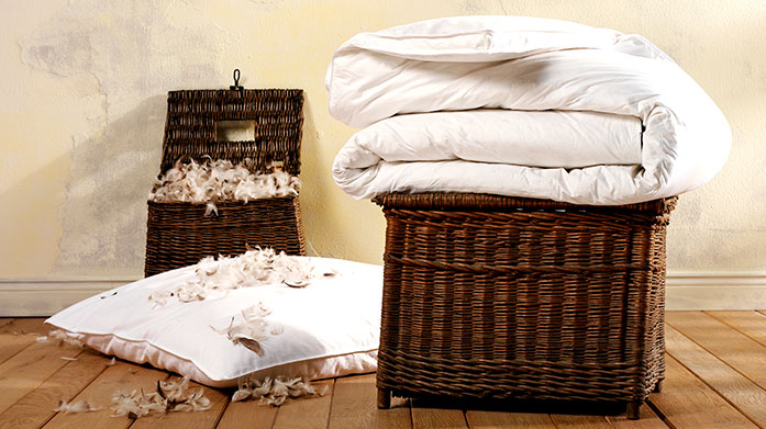 Surrey Down Duvets & Pillows